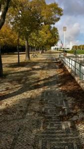 park-walkways
