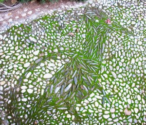 path-mosaic