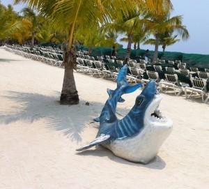 land-shark