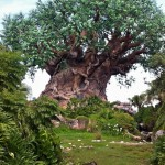 Disney's Animal Kingdom [Repost]