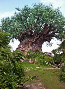 animalkingdom-lifetree