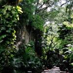 Nassau sites: Queen's Staircase [Redux]
